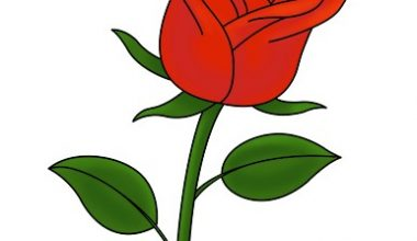 how to draw a rose 7